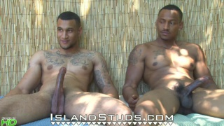 well-hung king brothers jack off together