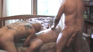 A bear threeway on video