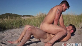 guys explore each other's bodies on the beach