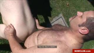 two bears fucking in the backyard