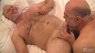 daddy with grey beard gets his dick sucked