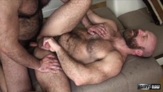 A Sweaty Cumpilation of hairy men