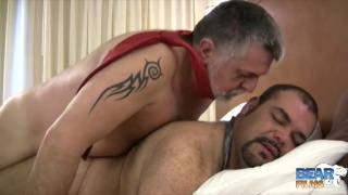 silver latin daddy fucks his bear's ass