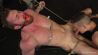 bearded hunk tied up and edged in gym