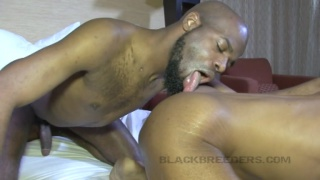 King delight gets his hole worked out