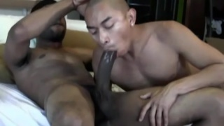 bottom takes tops killer dick ... 13 inches!