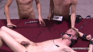 restrained twink with an electrode up his asshole