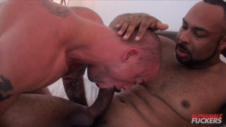 ray diesel shoves his huge cock in sean duran