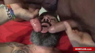 bald and bearded cocksucker services two men