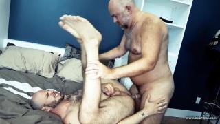 bald & bearded english daddy fucks bear butt