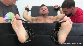 hung furry guy strapped into the tickling chair