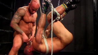 bound daddy hung upside down gets face fucked