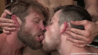 two hairy men compete for a guy's cock