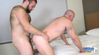 bearded daddy fucks his older bald buddy