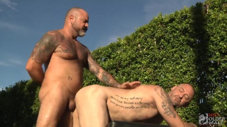 muscle bears fucking in the palm springs sun