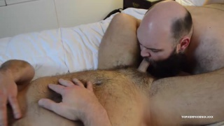 bald bearded man sucking a bear's cock