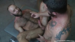 hunk watches a man stroke his big hairy cock and then ...