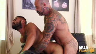 inked daddy fucks his bearded boy doggy style over the couch