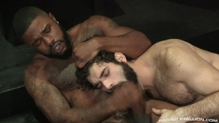 bearded guy gets rough fucked by muscle hunk