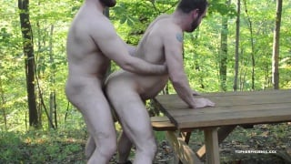 hairy bear men fucking on picnic table in woods