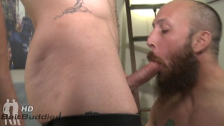 bearded cocksucker blows a bespectacled straight guy
