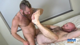 bald cub Chris Wydeman gets fucked by zack acland