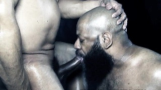 bald black man with bushy beard sucking dick