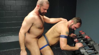 hairy daddies are ready to play
