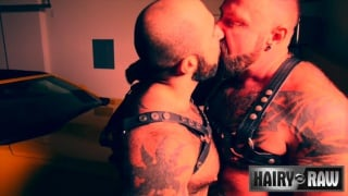 muscle bears in leather harnesses suck and fuck