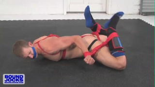 hogtied jock struggles on the floor with his ropes