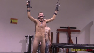 master hangs weights from his slave boy's nuts